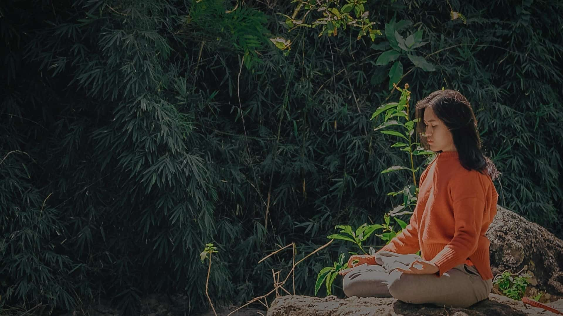 Let's Talk About Meditation in Life